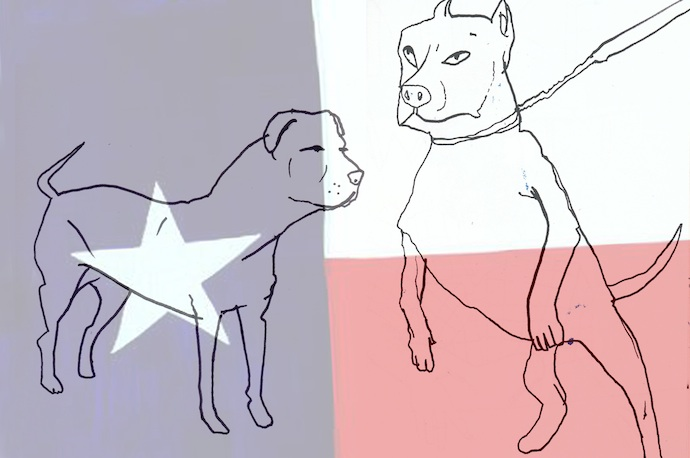 Dog-fight-Texas-Danny-Jock-Fanzine-690