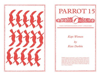 Parrot-15-Kept-Women-Kate-Durbin-330