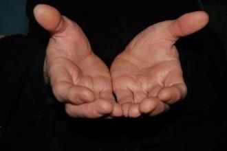 hands330