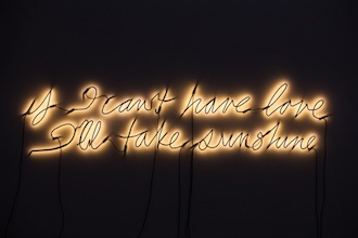 If I can't have love I'll take sunshine - Glenn Ligon