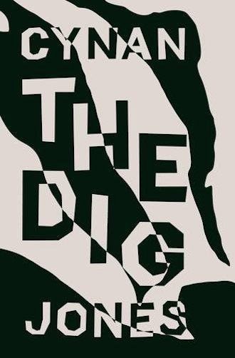the-dig