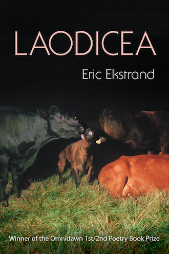 2014-09-08 Laodicea-Cover-GALLEY-KEN.indd