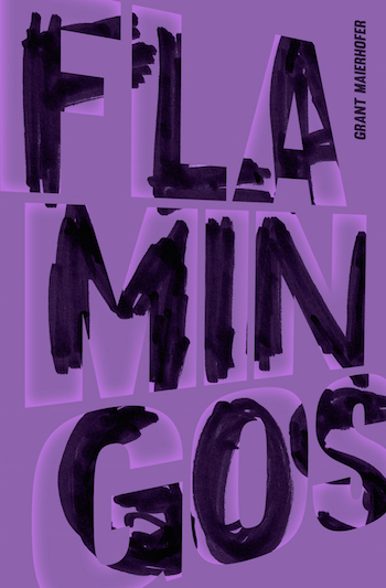 Flamingos+by+Grant+Maierhofer (1)