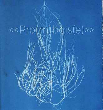 Promboise-cover-draft-New-Scaled-697x1024